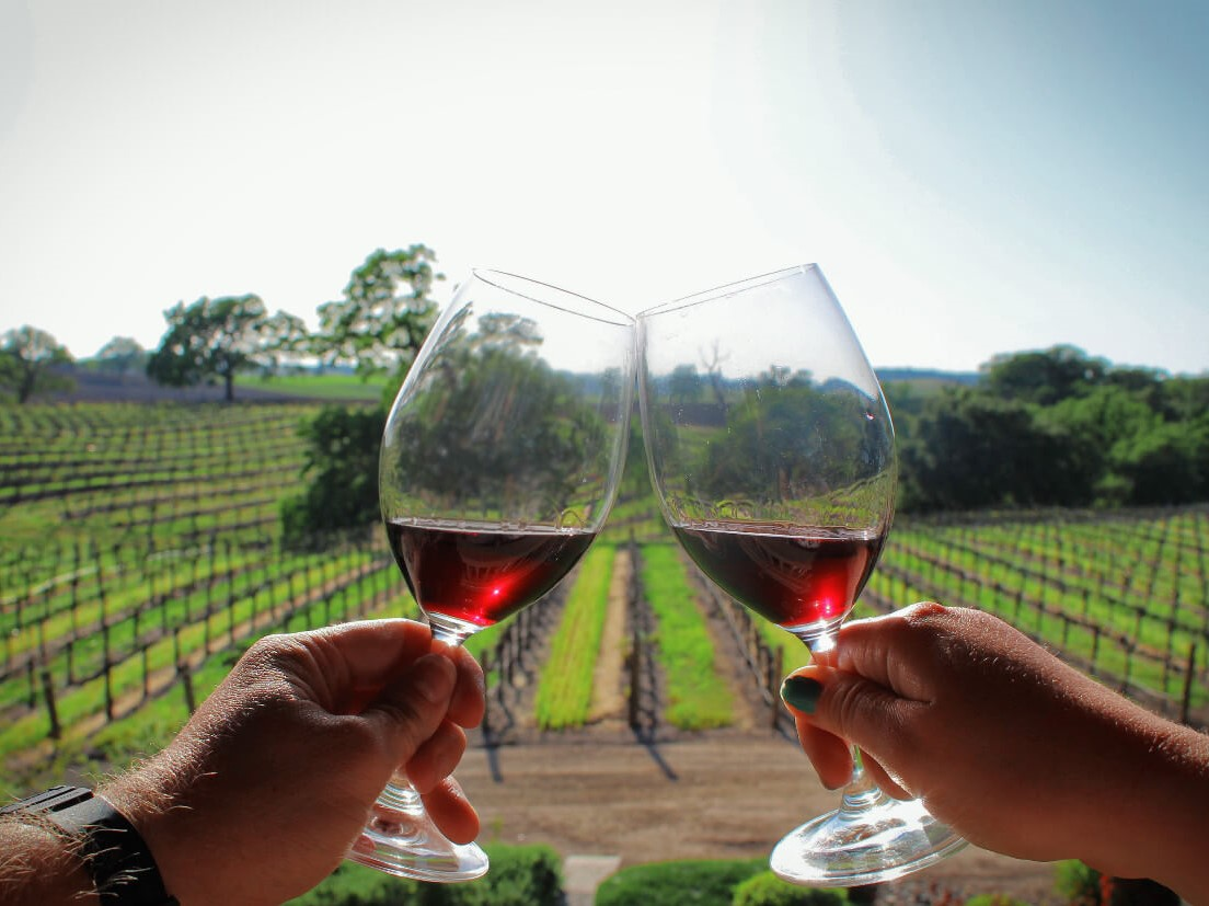 GO WINE TASTING IN PASO ROBLES